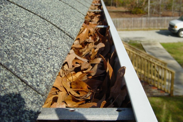 Gutter Cleaning – Ann Arbor, Michigan